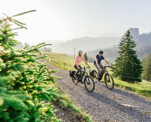 FLYER E-Bike Crossover Goroc2 Goroc3 Einsiedeln